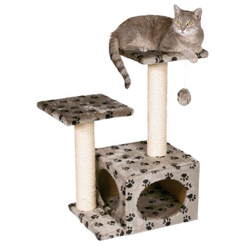 catshouse1