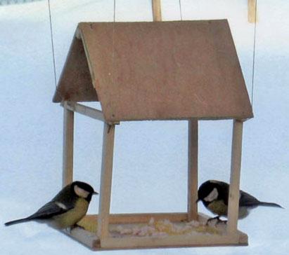 Кормим птиц