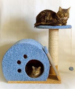 Оригинальный домик для кошки