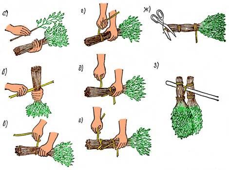 Заготовка веников из березы