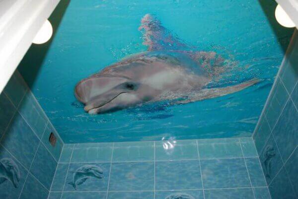 3д потолок в ванной