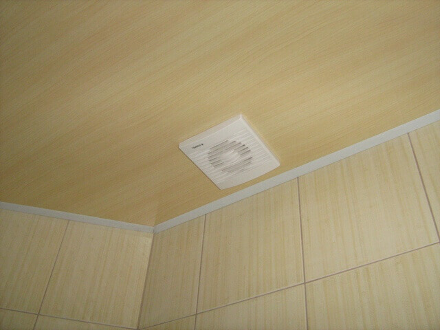 чем мыть пластиковые потолки в домашних условиях