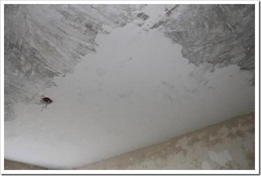 шпаклевка для потолка в ванной комнате