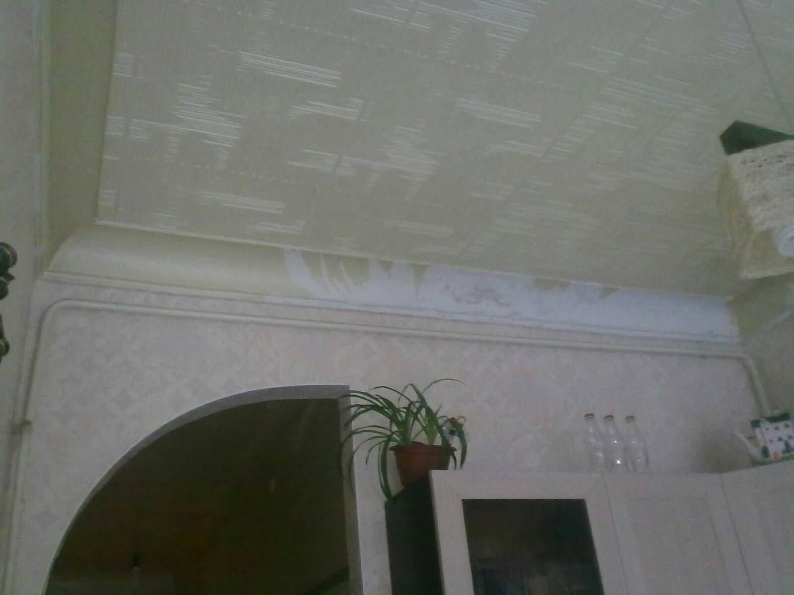 Дизайн потолка закруглённых